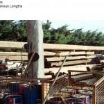 Reclaimed Original Beams Oak, Pine, Elm Vintage Beams