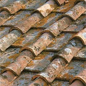 Antique Italian Roof Caps