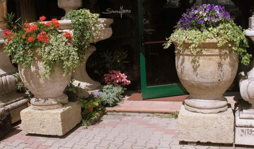 French Urns & Planters